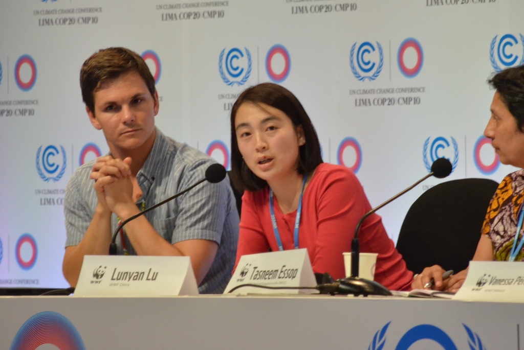 Lu Lunyun of the World Wildlife Fund in Beijing at the UN climate summit in Lima, Peru.