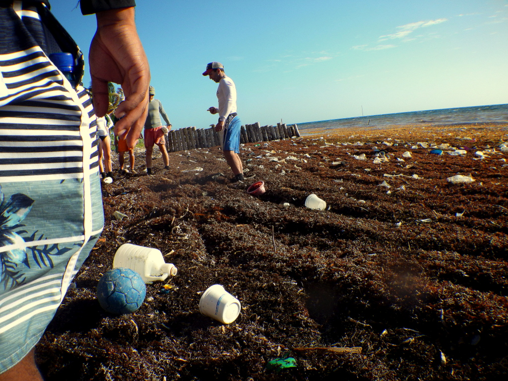 Wake Forest ecology student learn first hand the perils of plastic on Long Caye. Photo by Justin Catanoso