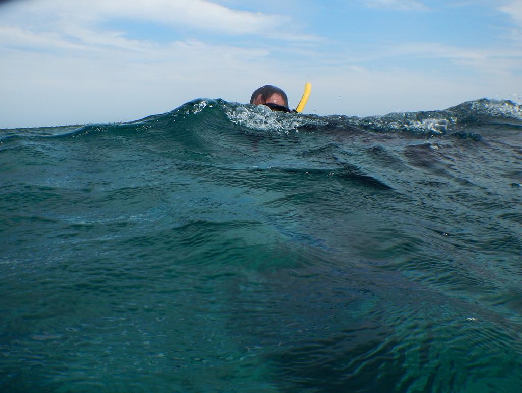 Miles Silman snorkeling.