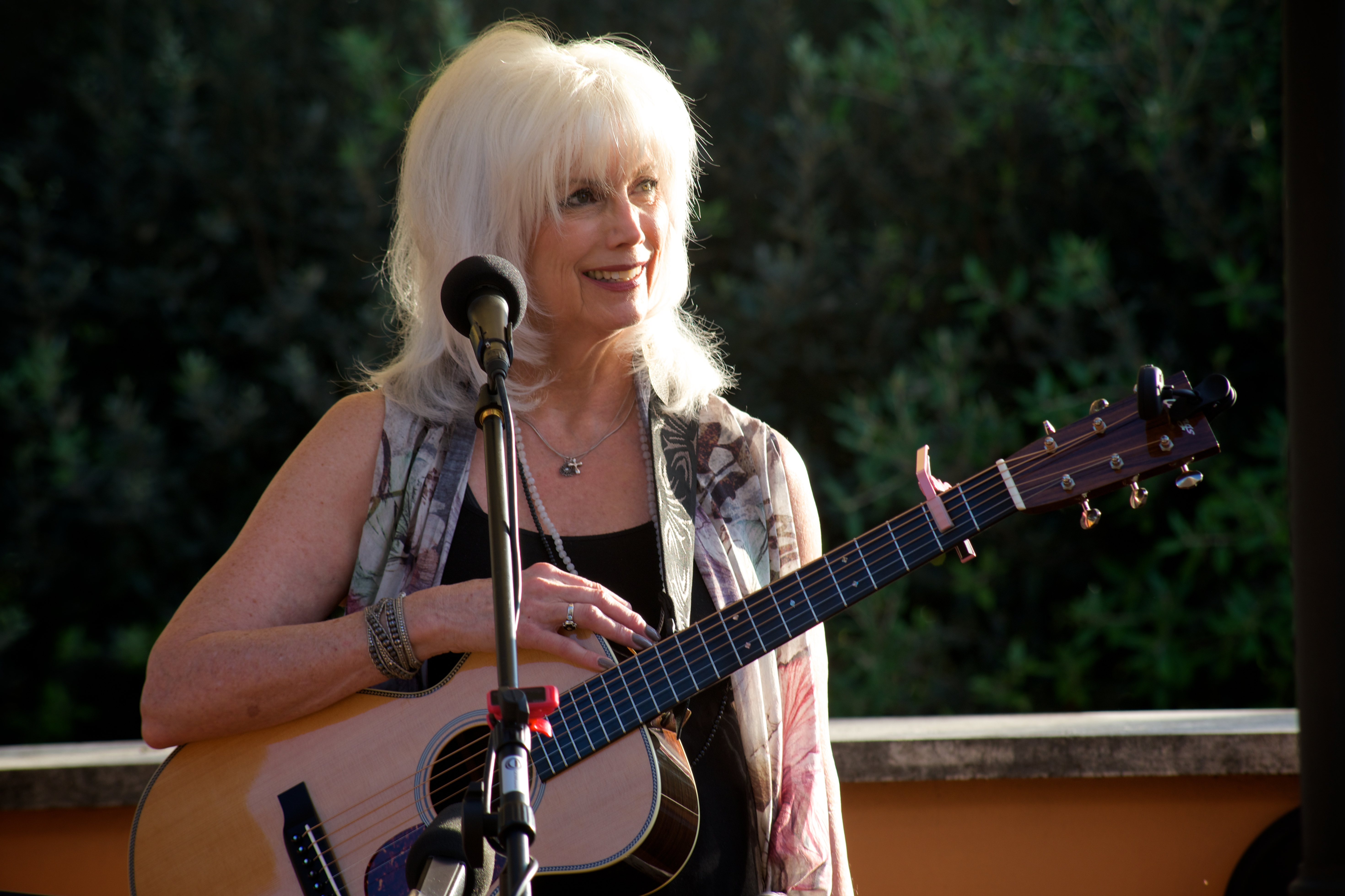 Emmylou Harris After The Gold Rush mp3